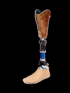 BMO - Prothèse Orthèse